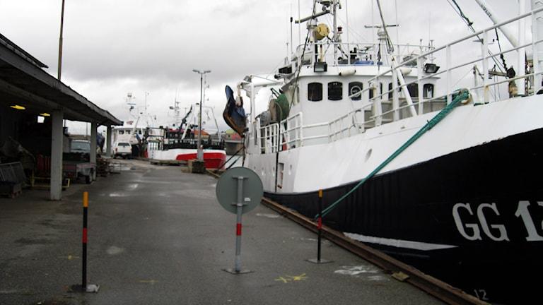 båtar vid saltö hamn