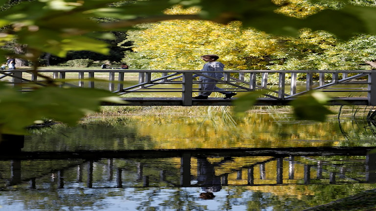 En pojke ovanför en å