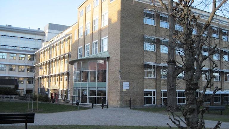 Törnströmska gymnasieskola Foto:Ingrid Elfstråhle/Sveriges Radio