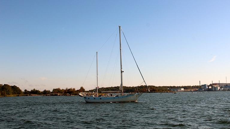 En segelbåt på havet.  Foto: Stina Linde/Sveriges Radio.