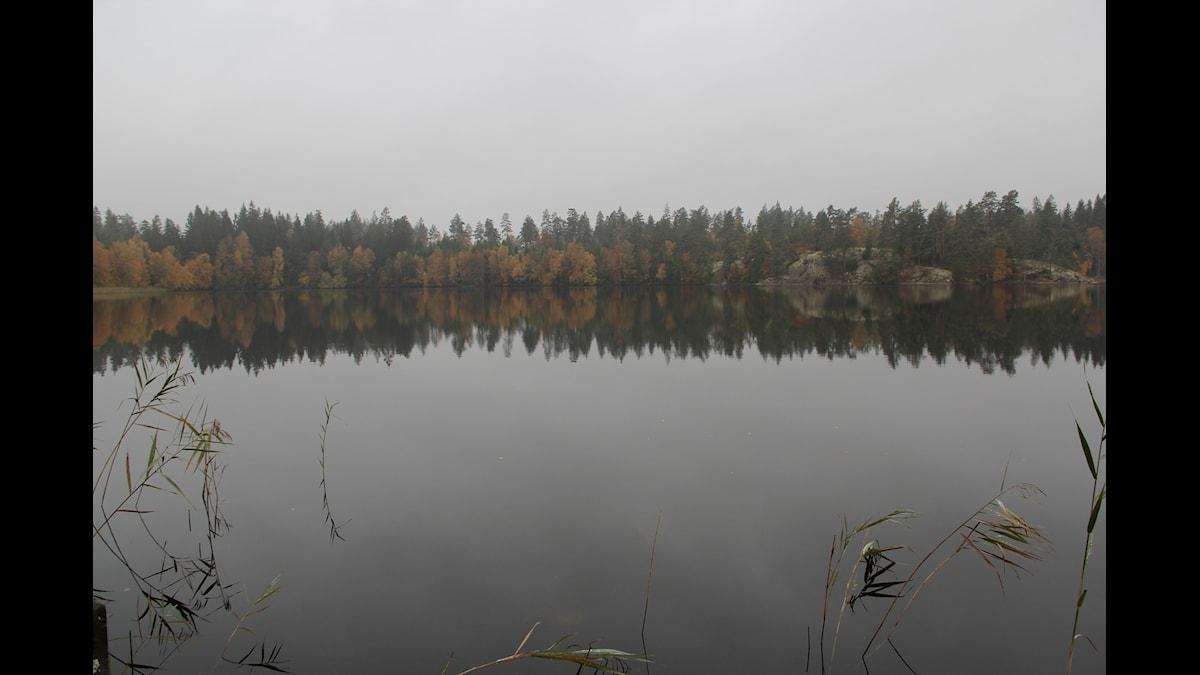 Galtsjön