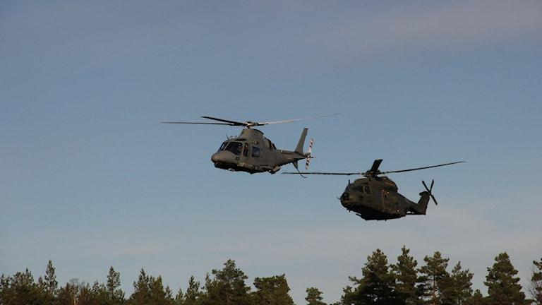 Två militära helikoptrar flyger lågt över trädtopparna. Foto: Alexander Zeilon Lund/Sveriges Radio