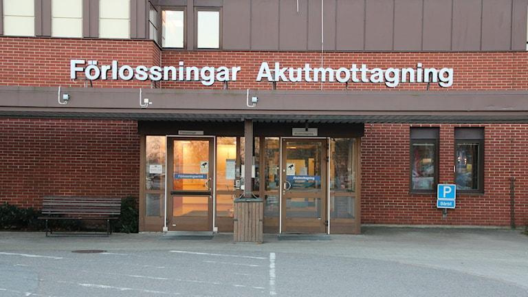 Två dörrar leder in i ett rött tegelhus. Ovanför dörrarna sitter en vit skylt. Förlossningar och Akutmottagning står det. Foto: Alexander Zeilon Lund/Sveriges Radio