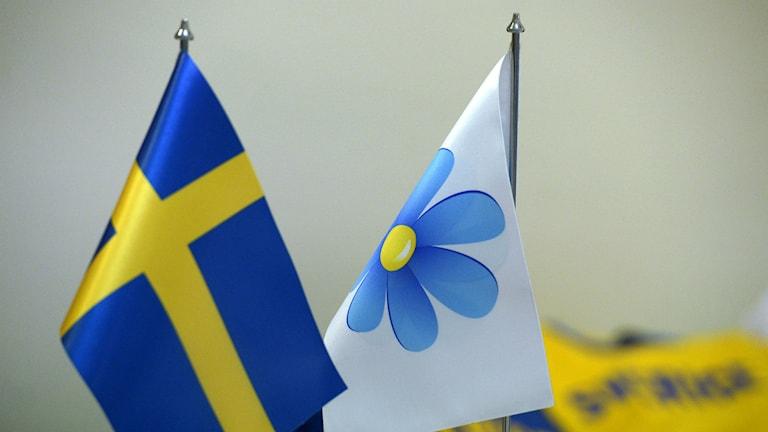Söndagens förhandlingar av Sverigedemokraternas landsdagar 2013 i Aros kongresscenter i Västerås. Foto: Janerik Henriksson/TT