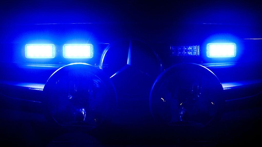 En polisbils blåljus lyser starkt. Foto: Pontus Lundahl/TT