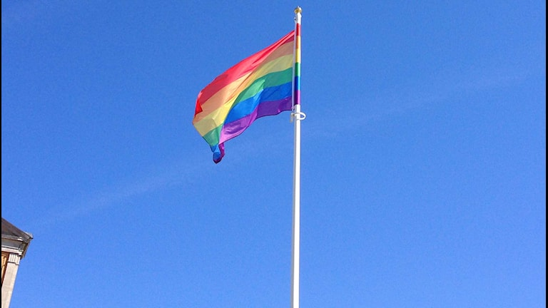Prideflagga vajar över Karlskrona. Foto:Daniel Kjellander/Sveriges Radio