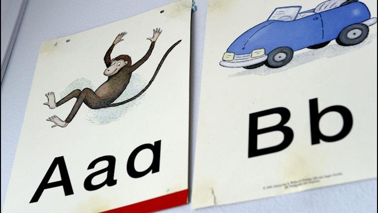 A för apa, B för bil. Foto: JANERIK HENRIKSSON / TT
