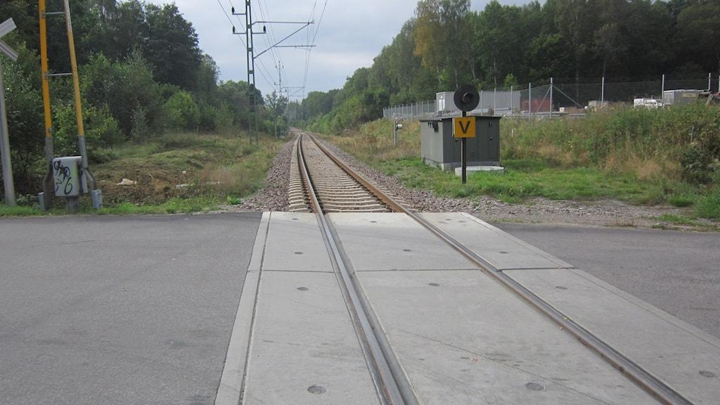 järnväg gå på räls stig Rödebyskolan. Foto: Carina Melin SR