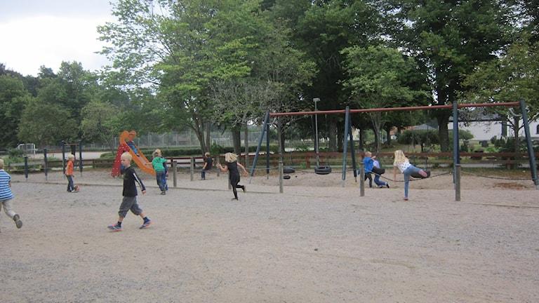 Arddey dhigata Rödebyskolan oo xilliga biriirifta qaadanaya  Foto: Carina Melin/SR