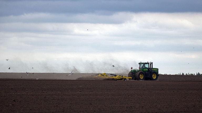 Självkörande traktorer är nu en verklighet. Foto: Adam Ihse/TT.