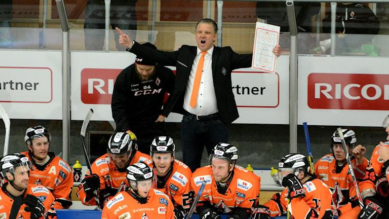 Pelle Hånberg tränare i KHK. Foto: Oscar Anderberg