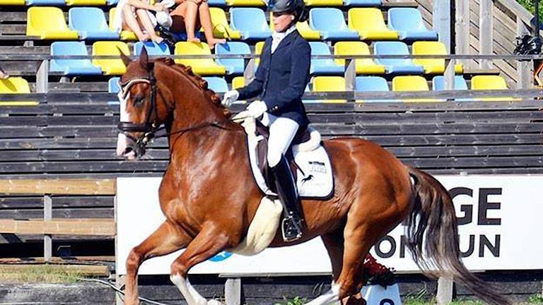 Its Ad Hoc med Jennifer Svensson på ryggen. Foto:Privat