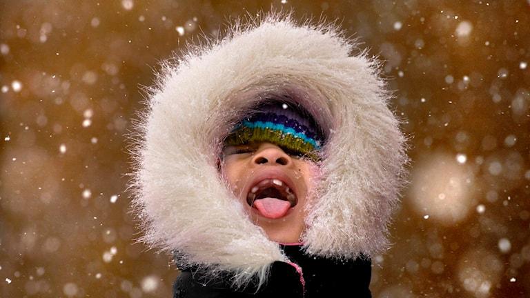 En pojke tittar upp mot hilmen och fångar snöflingor med munnen. Foto: TT