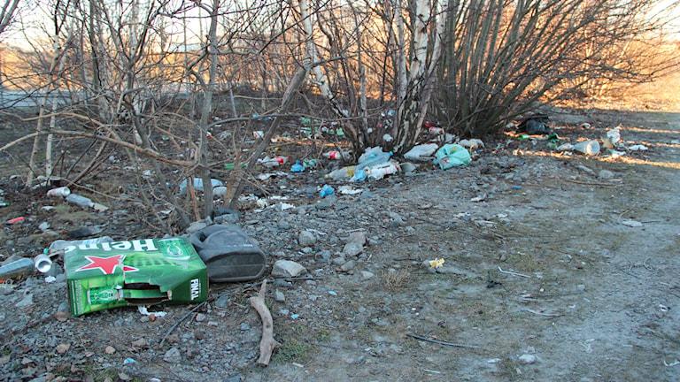 Resterna av ett ölflak gör sällskap med en oljedunk bland det kastade skräpet. Foto: Mikael Eriksson/Sveriges Radio
