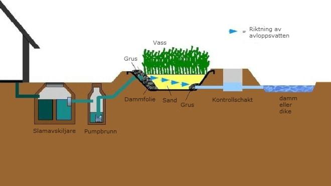 Illustration av hur växtreningsverket fungerar.