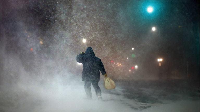 Man i snöstorm. Foto: Robert F. Bukaty/TT