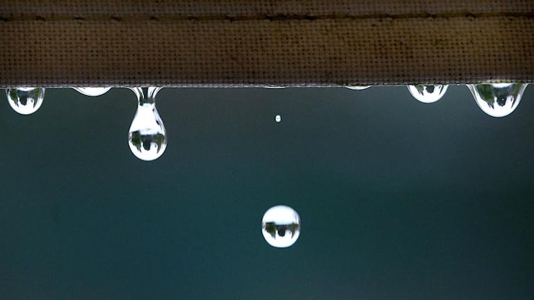 Vattendroppar. Foto: Roland Weihrauch/TT