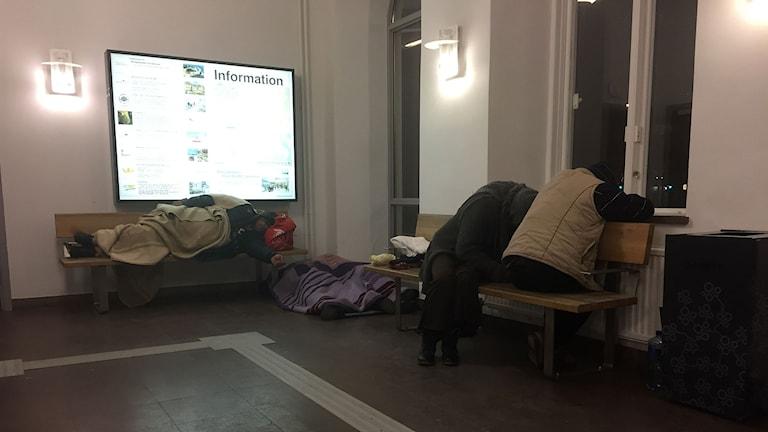 Vissa sover på bänkar andra på en kartongbit. Foto:Daniel Kjellander/Sveriges Radio.