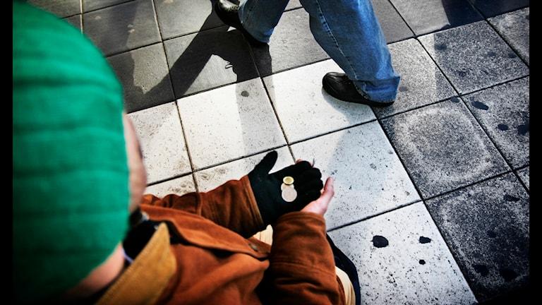 Tiggare. Foto: Oskar Kullander/TT