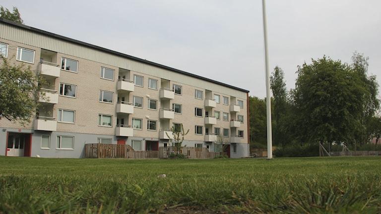 Hyreshus längs Almvägen i KallingeFoto: Mikael Eriksson/Sveriges Radio