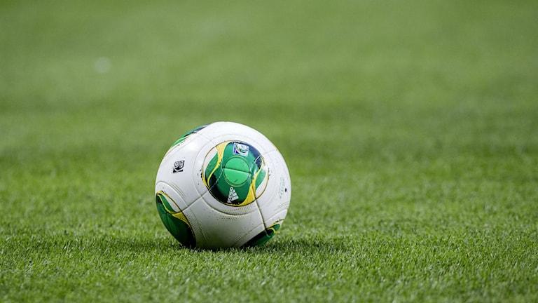 Fotboll på gräsmatta. Foto: Christine Olsson/TT