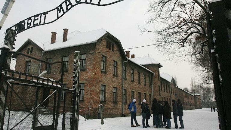 För flera år sedan hade niondeklassare i Blekinge möjlighet att besöka Auschwitz precis som andra elever i landet. Foto:TT