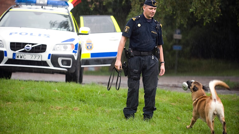 En polis tränar sin hund. Foto: Felipe Morales/TT