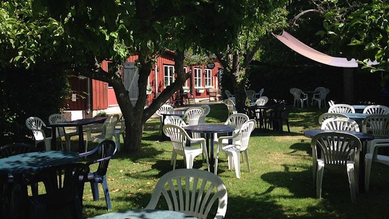 Bord och stolar i en trädgård.