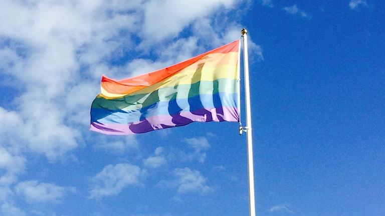 prideflagga Foto: Malin Hjulström /Sveriges Radio