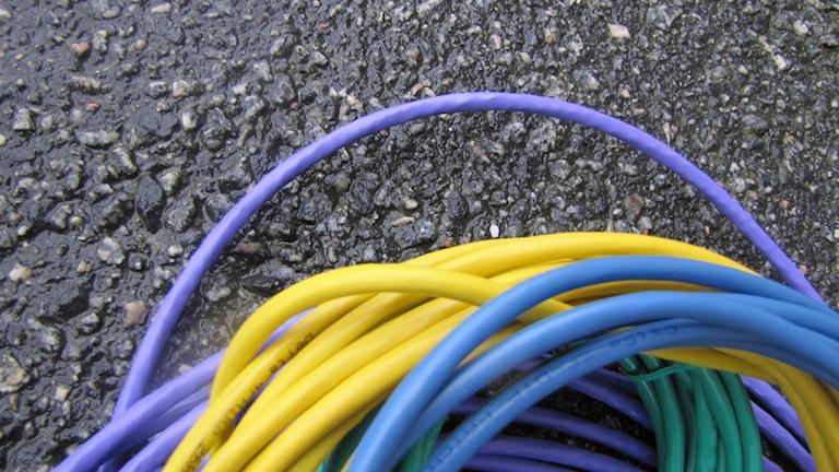 Reglerna för bredbandutbyggnad på landsbygden görs om. Foto: Monika Titor/SR