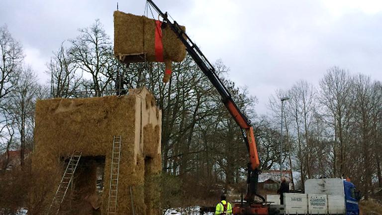En lyftkran sätter huvudet på den stora bocken. Foto: Anton Emanuelsson Vretander/Sveriges Radio.