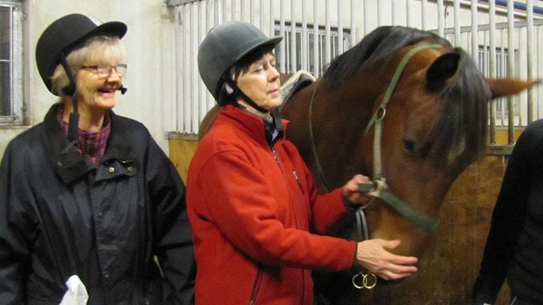 Eva Andreasson och Birgitta Håkansson hjälps åt att sadla. Foto:Monika Titor/SR