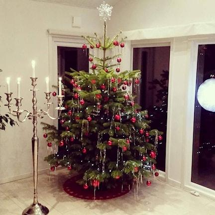 En vacker julgran.