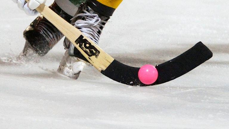 Bandyklubba och bandyboll med skridskor i bakgrunden. Foto: Bertil Enevåg Ericsson.