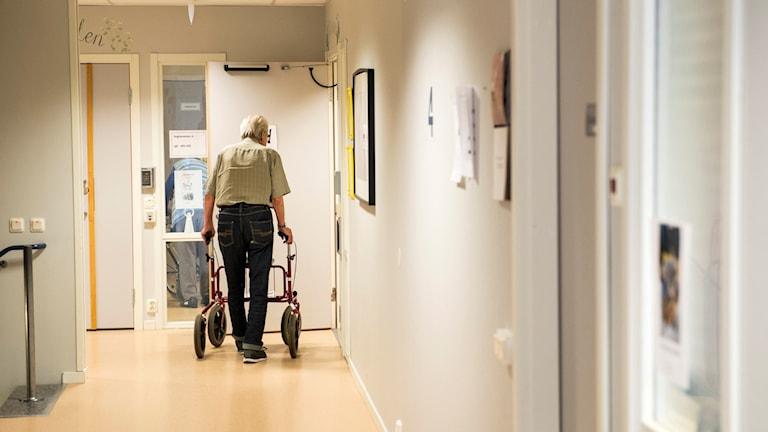 En äldre man går med sin rullator i en korridor på ett äldreboende.