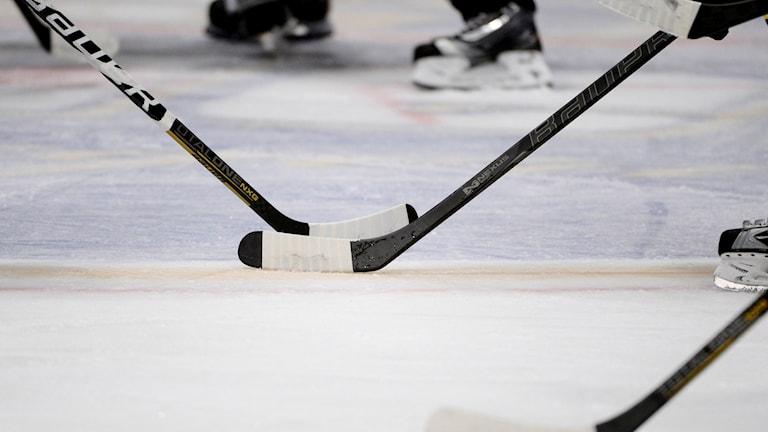 Hockeyklubbor vid ett nedsläpp och domarens skridskor i bakgrunden.