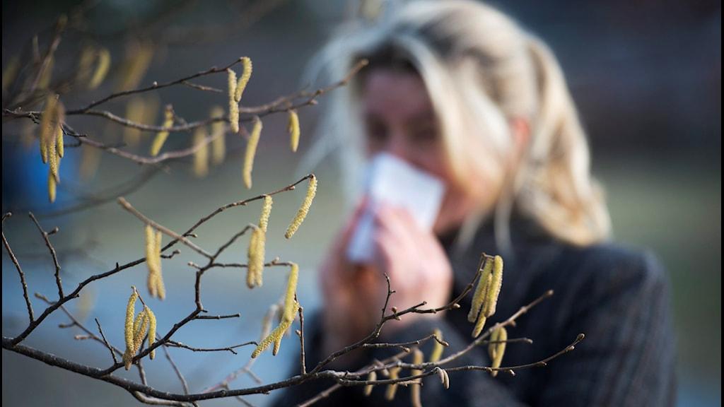 En kvinna står vid ett träd med pollen och snyter sig.