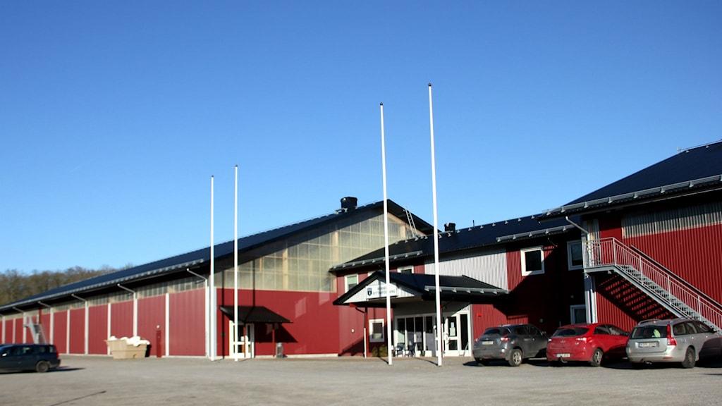 Ronneby Horse Centers röda ridhur och stall mot en klarblå himmel.
