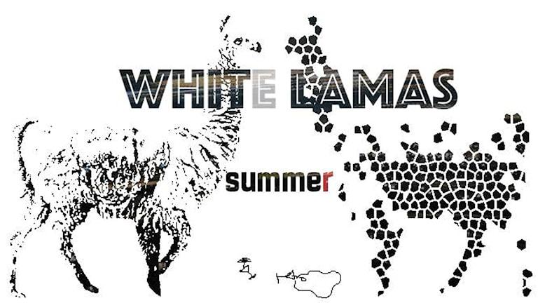 Ett svartvitt skivomslag med två vita lamor.