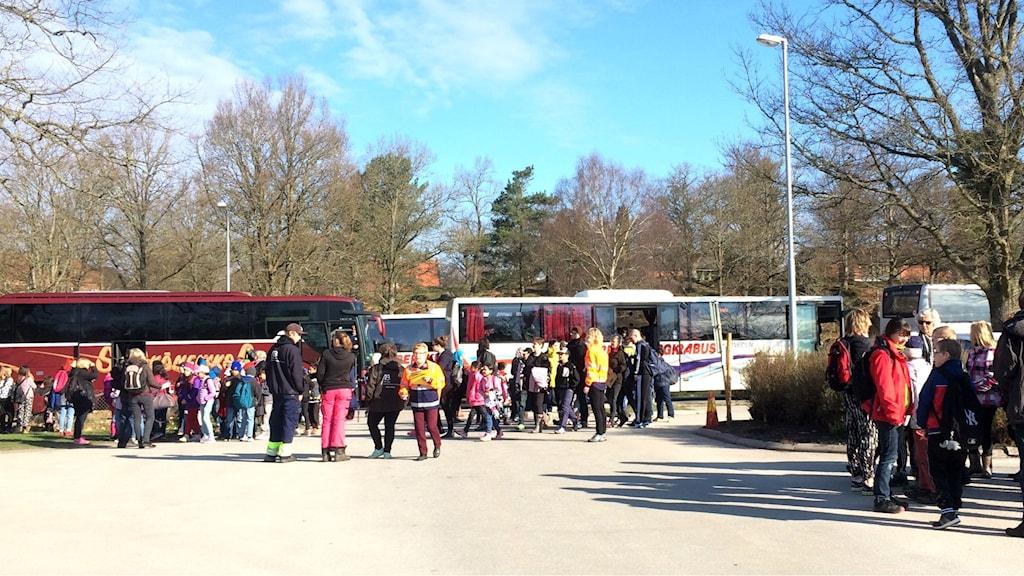 Massor av barn framför en parkeringsplats med bussar på.