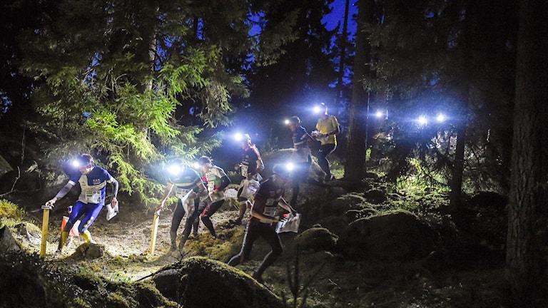 ett tiotal nattorienterare med pannlampor vid en kontroll i skogen.