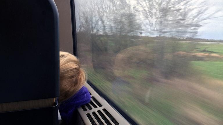 Bakhuvudet på ett barn som lutar sig mot fönstret på ett tåg.