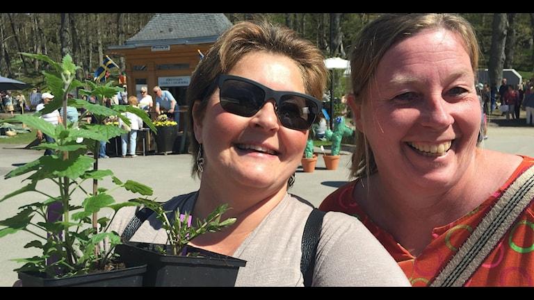 Helena Jardbrink och hennes kompis handlade medicinalväxter.