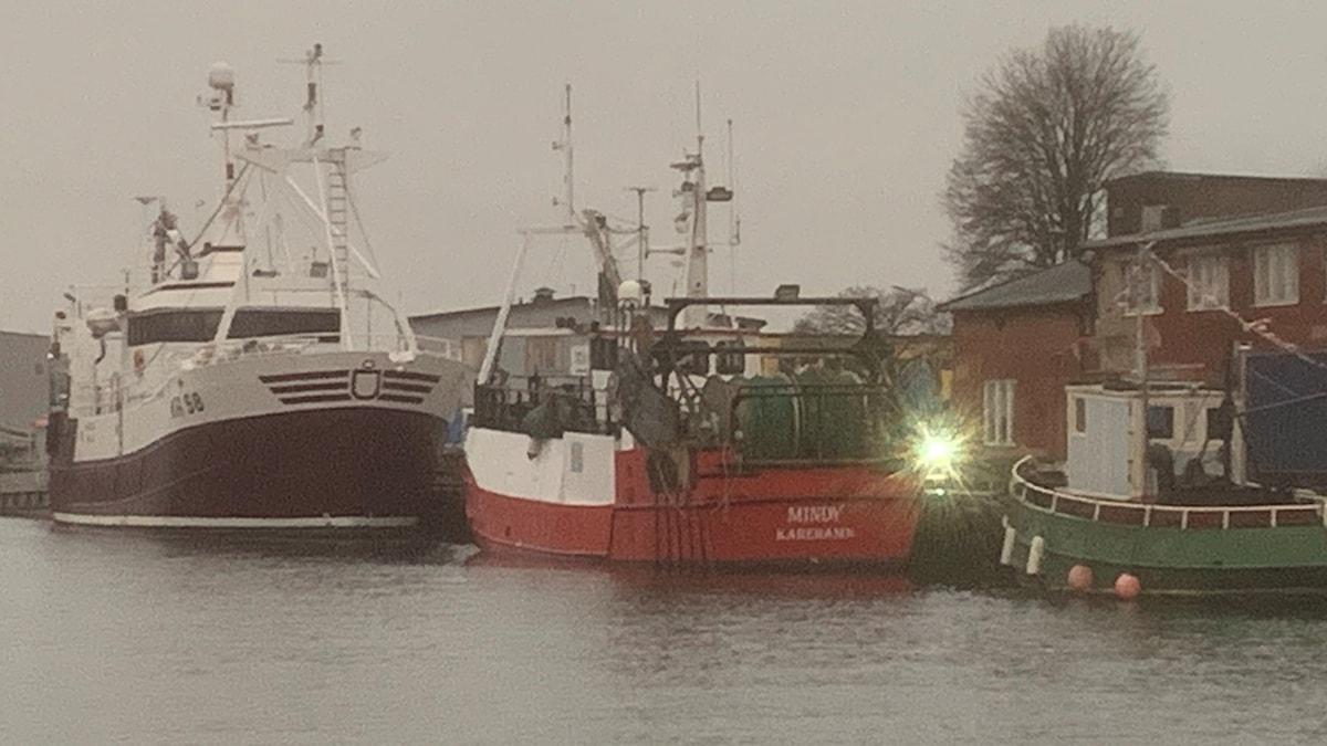 Saltö fiskhamn i Karlskrona.
