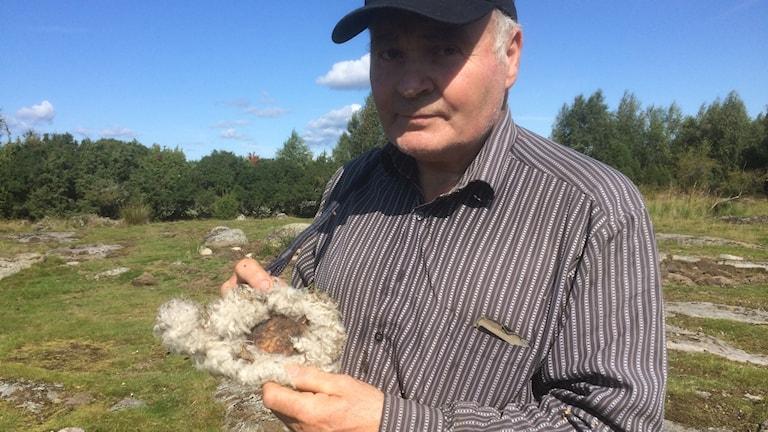 bo lindman fårägare med skinnbit i handen