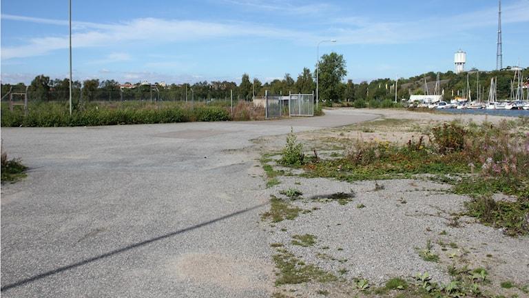 En asfalterad korsning med stängsel i bakgrunden och ogräs och grus i förgrunden.