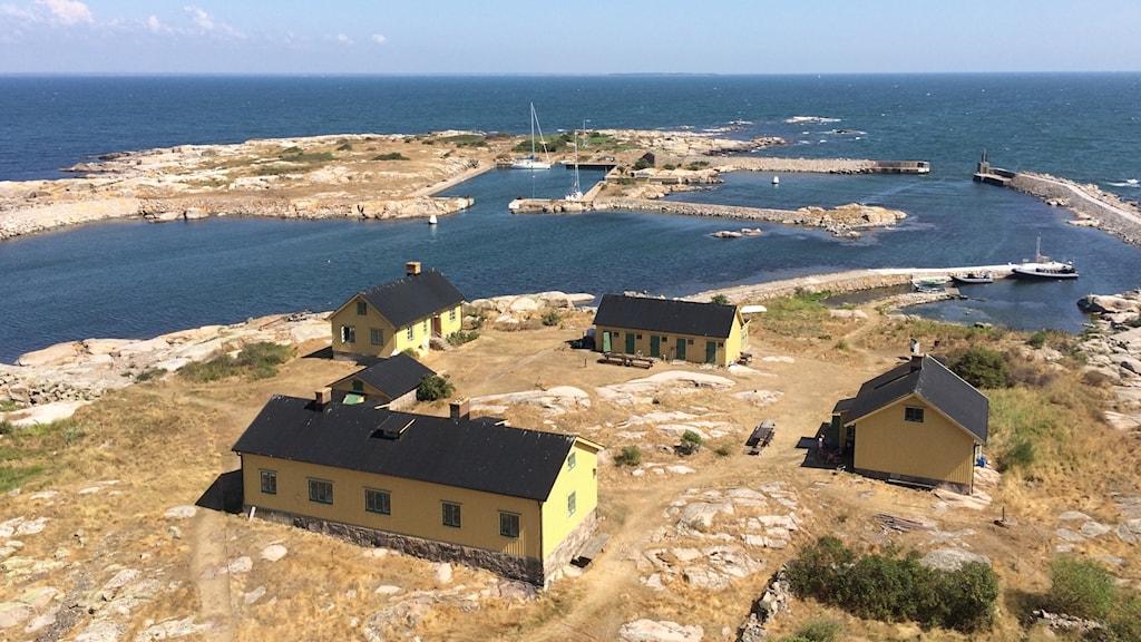 Flera gula hus på ön Utklippan i Blekinge skärgård.
