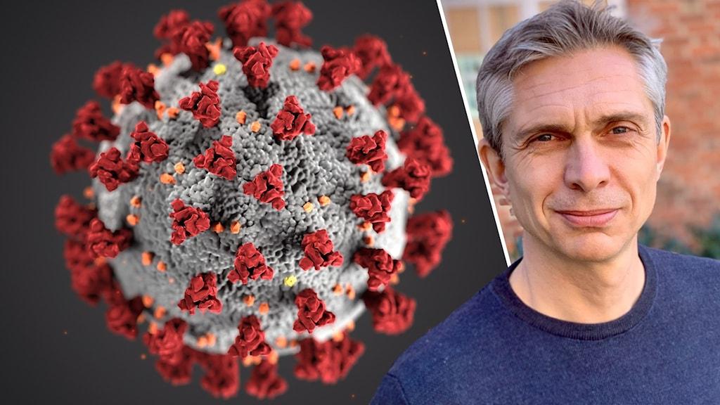 Illustration av coronaviruset från CDC samt Olof Blivik biträdande smittskyddsläkare på Region Blekinge.
