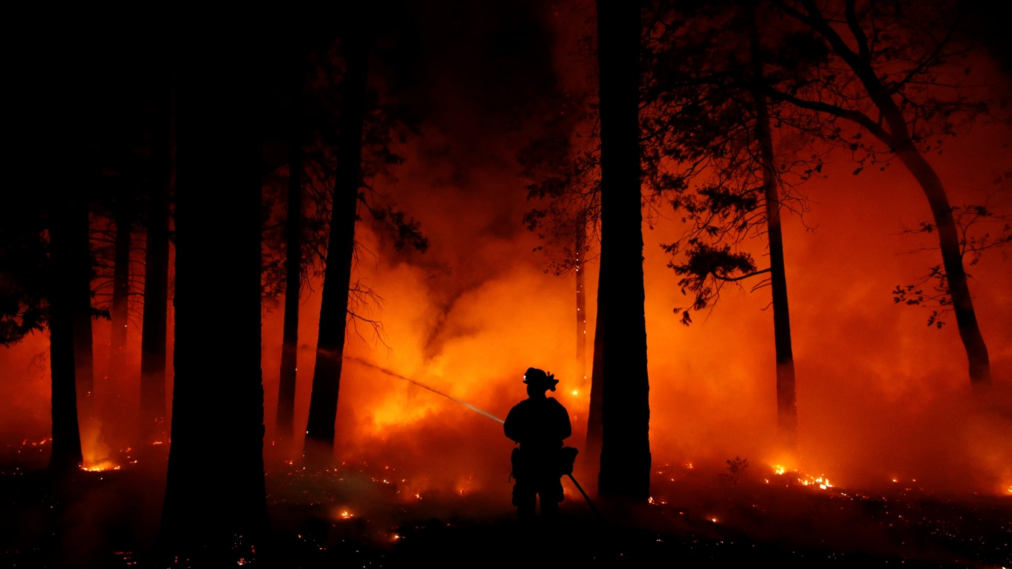 Kalifornien panikflykt undan elden