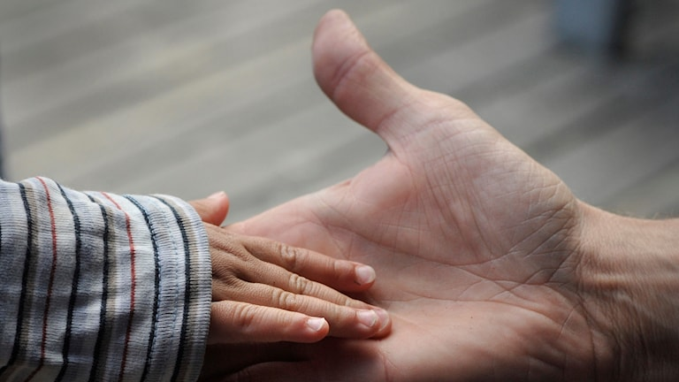 En barnhand och en vuxen hand möts.